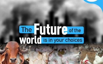 The effect factory farms have on health, animals and the planet